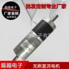 厂家专业生产电机 12V直流无刷减速电机 无刷直流减速马达