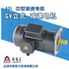 1500W立式小金刚中型齿轮减速电机 GV32-1500W-10S