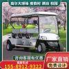 高尔夫球车四轮电动车定制观光电瓶车高尔夫球场接待车小区看房车