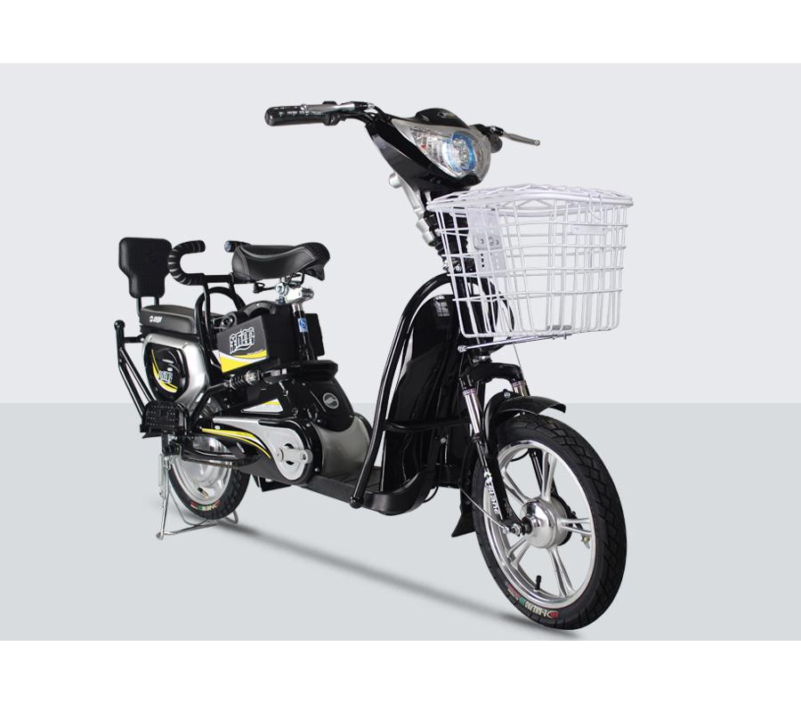 新蕾电动车T-1图片