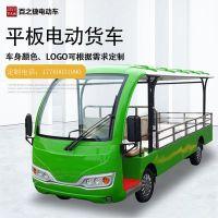 厂家直供2人座平板电动货车搬运车社区公园四轮可定制运输用车